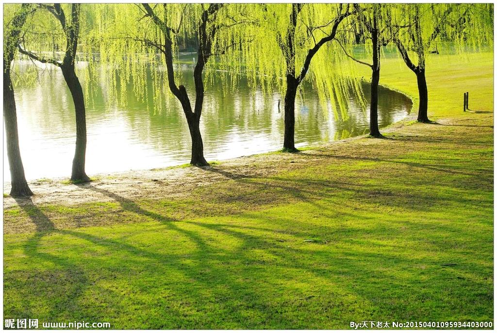 随着春姑娘的脚步慢慢逼近,柳树发芽,桃树开花,春天的世界总是那么